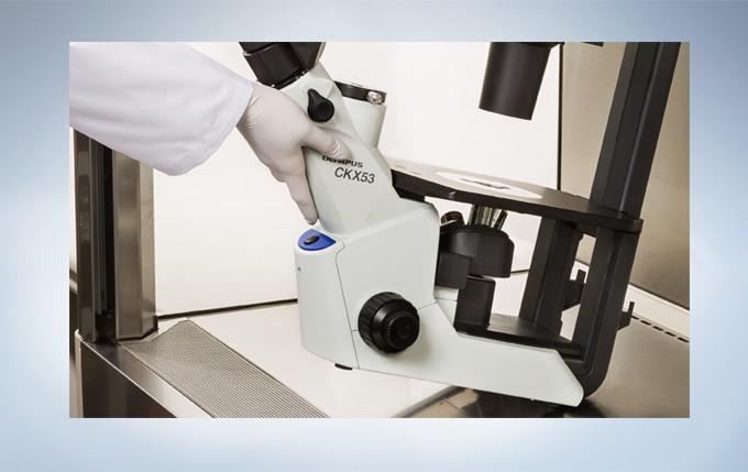 无菌条件下有效的细胞观察