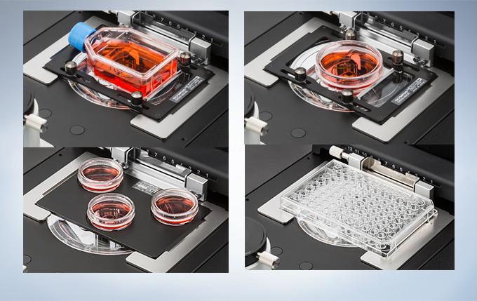 可容纳细胞培养容器的品种