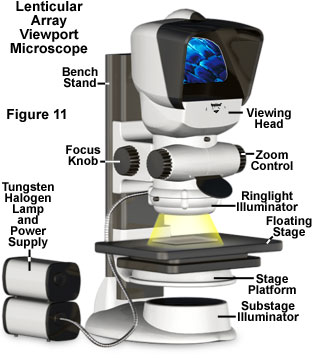 透射阵列视图显微镜