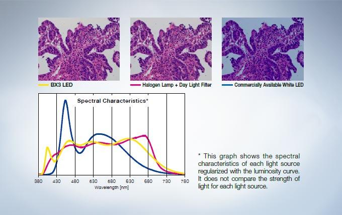 为病理学和细胞学设计