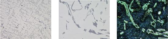 改变放大倍率或观察方法时,显微镜自动调节光强到正确值