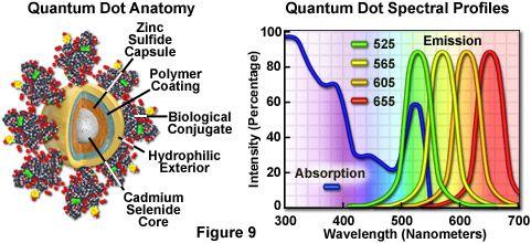 量子点解剖和光谱图