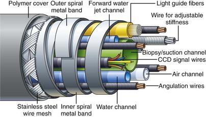 可变硬度结肠镜的内部组件