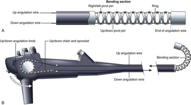 弯曲部分的结构