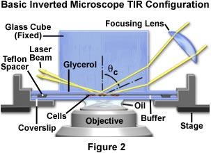 基础倒置显微镜TIR结构